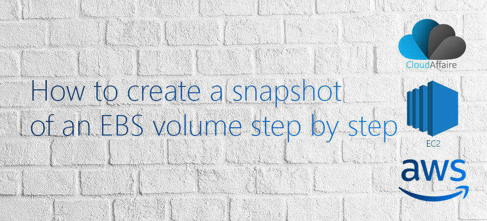 How to create a snapshot  of an EBS volume step by step