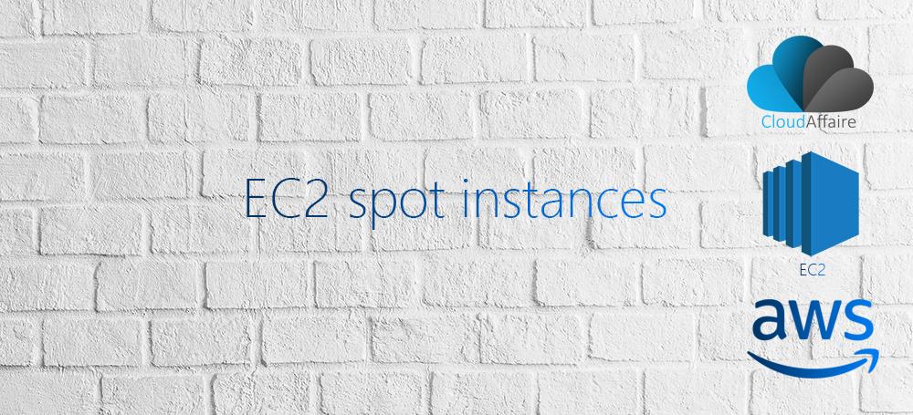 AWS EC2 Spot Instance