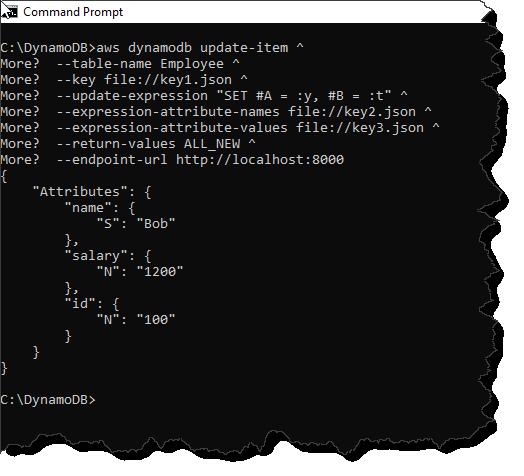 DynamoDB API